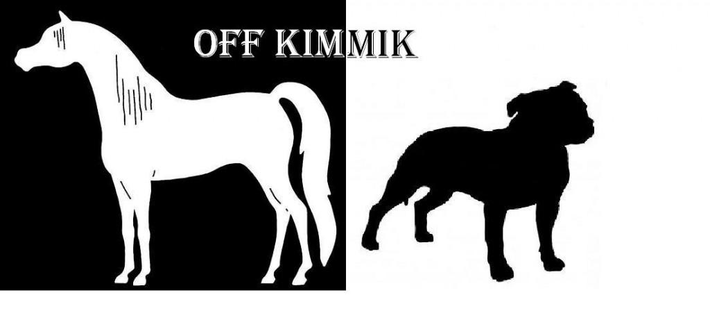 kimmik-logo